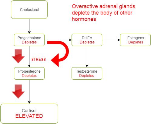 Overactive Adrenals