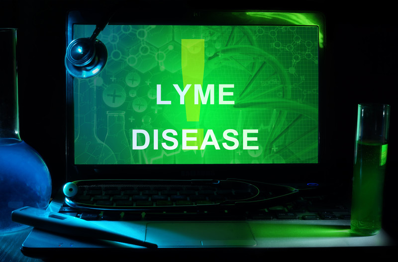 Lyme | A Functional Medicine Approach
